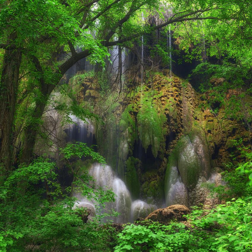 Gorman Falls #2